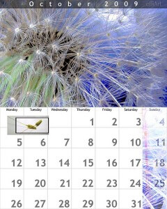 2009年10月のカレンダー
