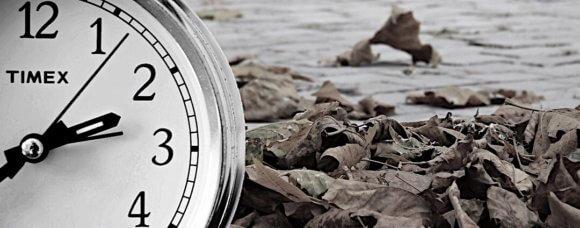 丸い置き時計と落ち葉