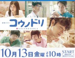 テレビドラマ、コウノドリの広告。10月13日金曜10時スタート